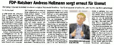 WAZ20151124-FDPhellmann.png
